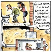 desratización, desinfección, desinfectación, ratones, cucarachas, ratas, plagas